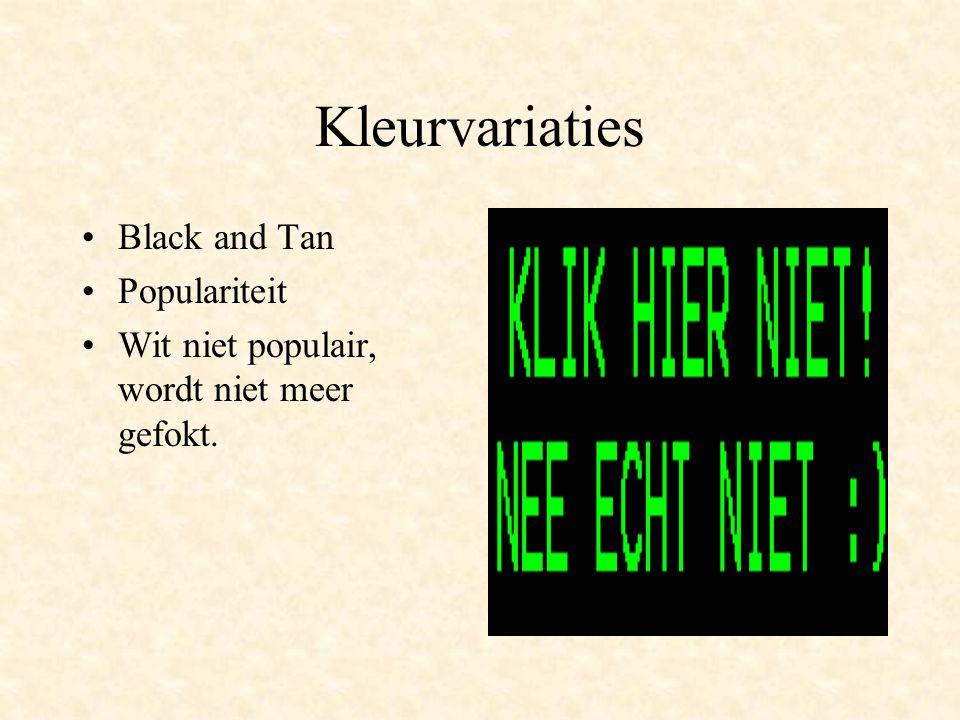 Kleurvariaties Black and Tan Populariteit Wit niet populair, wordt niet meer gefokt.
