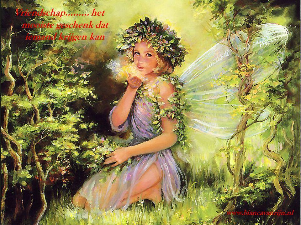 Vriendschap……… het mooiste geschenk dat iemand krijgen kan www.biancavanrijn.nl