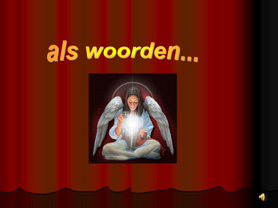 www.biancavanrijn.nl