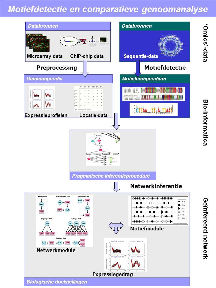 Motiefdetectie en comparatieve genoomanalyse Databronnen Datacompendia Databronnen PreprocessingMotiefdetectie Pragmatische Inferentieprocedure Motief
