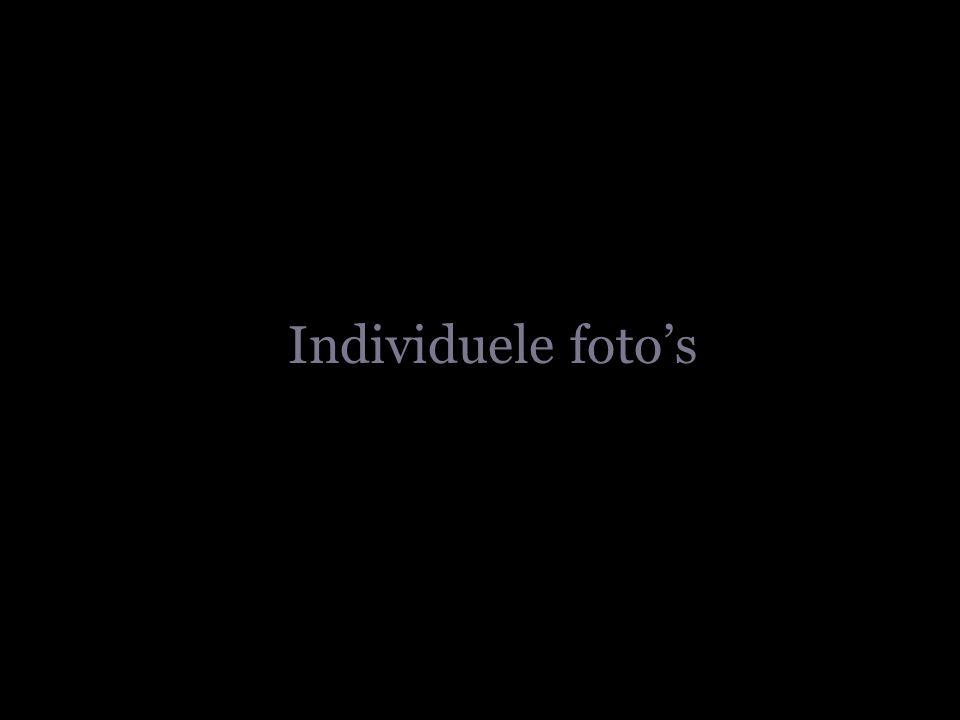 Individuele foto's