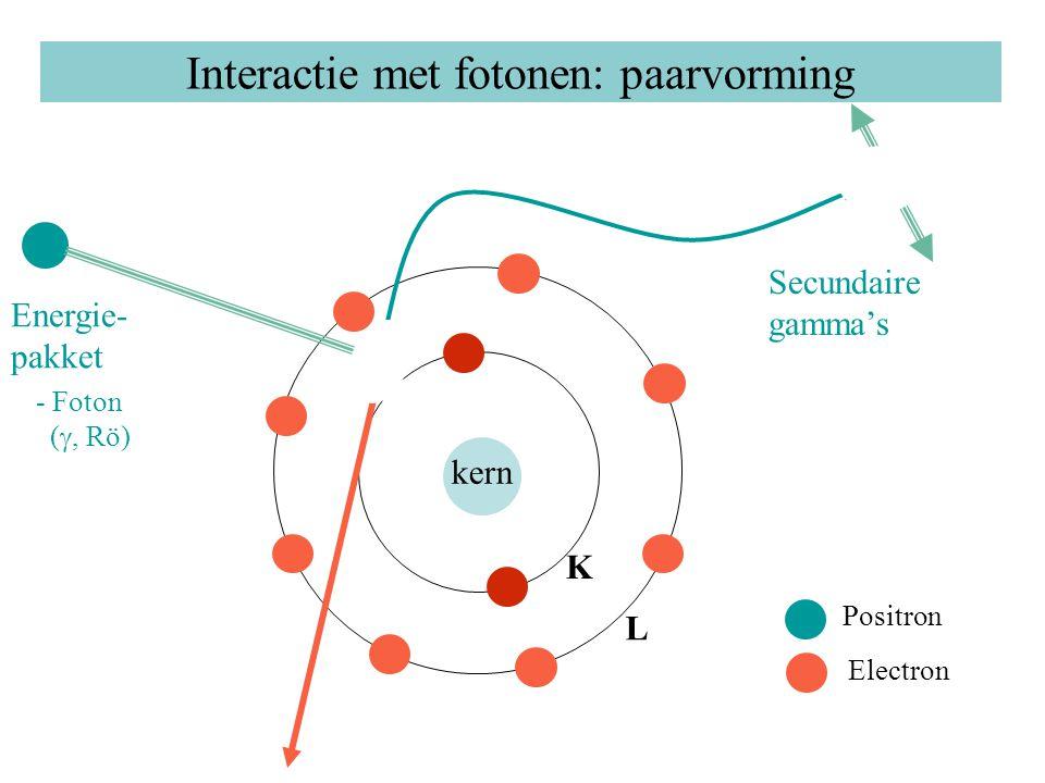 Interactie met fotonen: paarvorming kern K L Energie- pakket - Foton ( , Rö) Positron Electron Secundaire gamma's