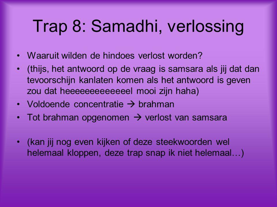 Trap 8: Samadhi, verlossing Waaruit wilden de hindoes verlost worden.