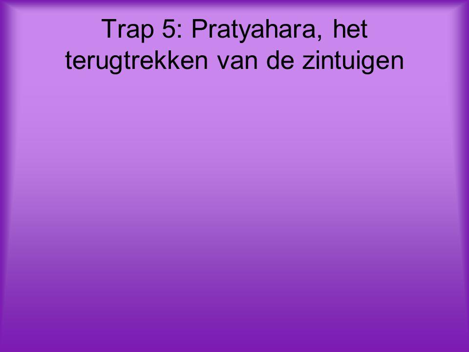Trap 5: Pratyahara, het terugtrekken van de zintuigen