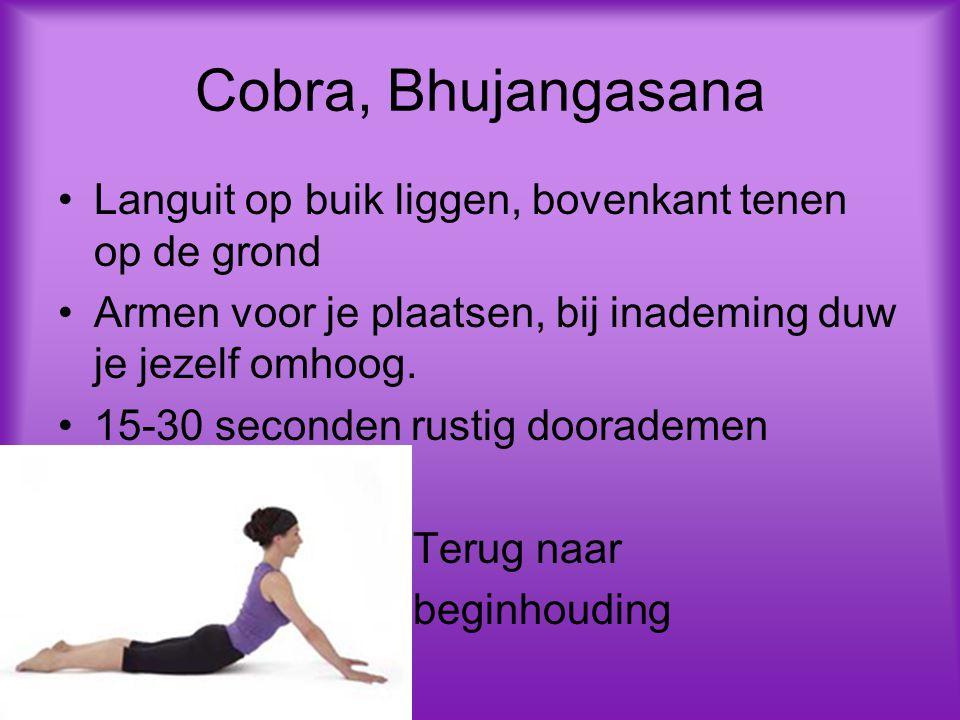 Cobra, Bhujangasana Languit op buik liggen, bovenkant tenen op de grond Armen voor je plaatsen, bij inademing duw je jezelf omhoog. 15-30 seconden rus