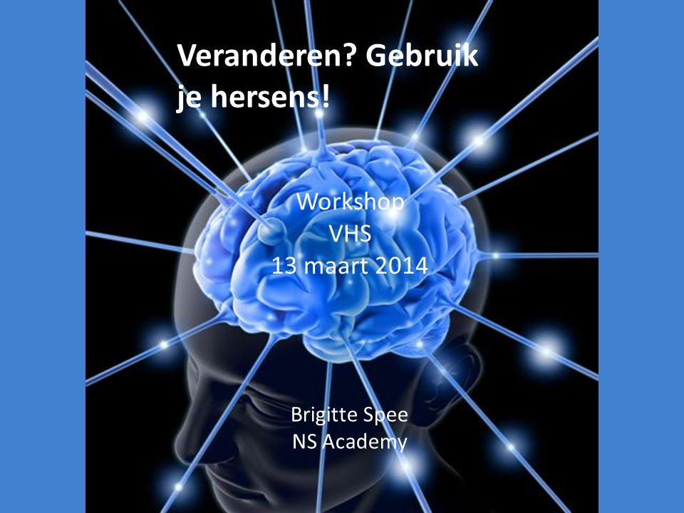Brigitte Spee NS Academy Workshop VHS 13 maart 2014 Veranderen? Gebruik je hersens!