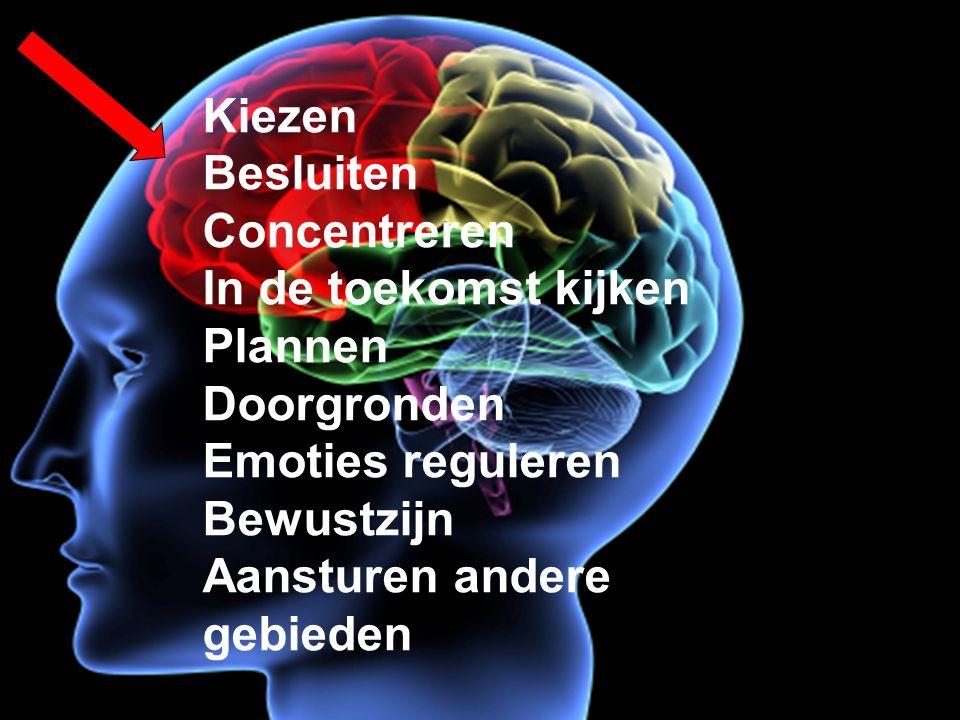 Kiezen Besluiten Concentreren In de toekomst kijken Plannen Doorgronden Emoties reguleren Bewustzijn Aansturen andere gebieden