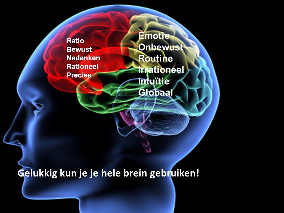 Ratio Bewust Nadenken Rationeel Precies Emotie Onbewust Routine Irrationeel Intuïtie Globaal Gelukkig kun je je hele brein gebruiken!