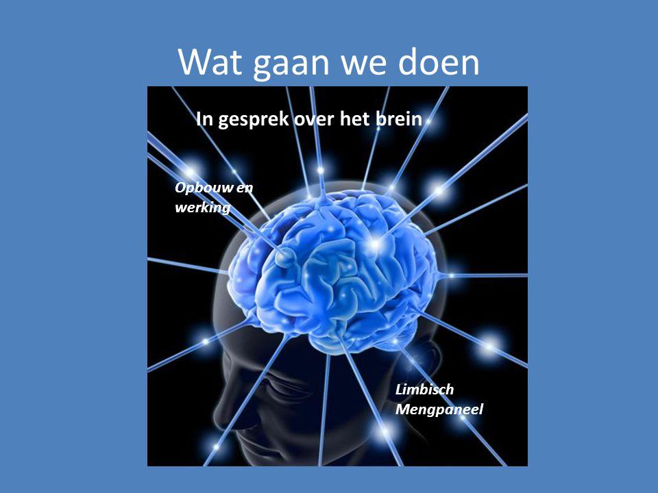 Wat gaan we doen In gesprek over het brein Opbouw en werking Limbisch Mengpaneel
