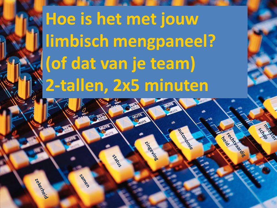 zekerheid samen status zingeving autonomie rechtvaardig heid meester schap Hoe is het met jouw limbisch mengpaneel? (of dat van je team) 2-tallen, 2x5