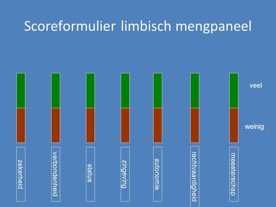 Scoreformulier limbisch mengpaneel zekerheidstatusautonomie verbondenheidmeesterschap zingeving rechtvaardigheid veel weinig