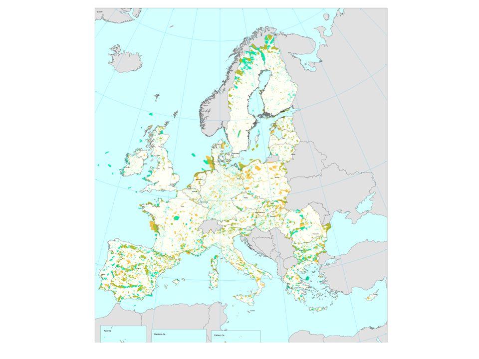 instrumenten Habitatrichtlijn Vogelrichtlijn Geïmplementeerd in de Natuurbeschermingswet 1998 sinds 2005 Bevat regels ter bescherming van waardevolle natuur- gebieden met het oog op behoud van biodiversiteit.