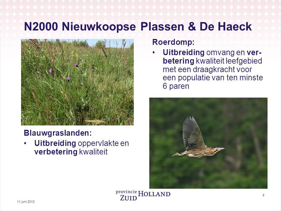 11 juni 2013 8 N2000 Nieuwkoopse Plassen & De Haeck Roerdomp: Uitbreiding omvang en ver- betering kwaliteit leefgebied met een draagkracht voor een populatie van ten minste 6 paren Blauwgraslanden: Uitbreiding oppervlakte en verbetering kwaliteit