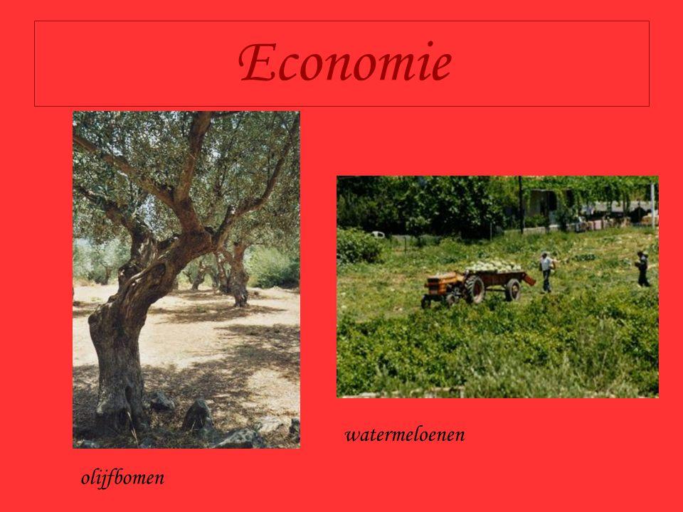 Economie olijfbomen watermeloenen