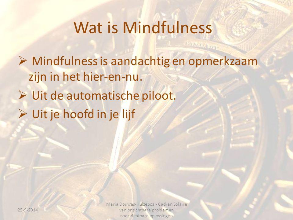 Wat is Mindfulness  Mindfulness is aandachtig en opmerkzaam zijn in het hier-en-nu.