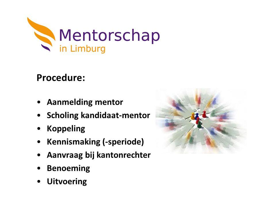 Procedure: Aanmelding mentor Scholing kandidaat-mentor Koppeling Kennismaking (-speriode) Aanvraag bij kantonrechter Benoeming Uitvoering