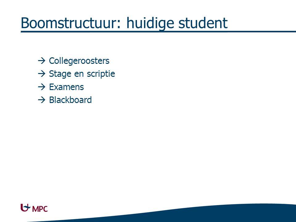 Boomstructuur: huidige student  Collegeroosters  Stage en scriptie  Examens  Blackboard