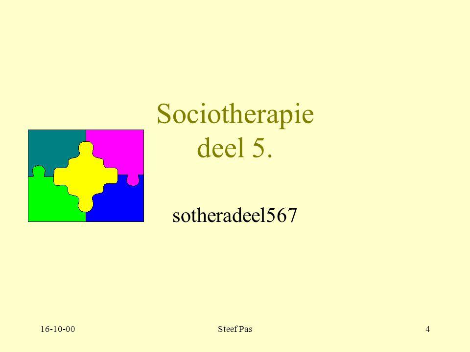 16-10-00Steef Pas3 Werken in een therapeutisch milieu C.Janzig & J.Kerstens 4e druk Team Sociotherapie