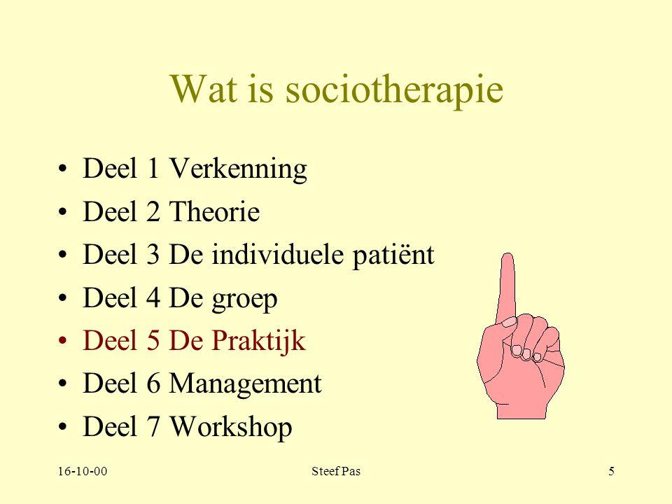 16-10-00Steef Pas45 Wat is sociotherapie Deel 1 Verkenning Deel 2 Theorie Deel 3 De individuele patiënt Deel 4 De groep Deel 5 De Praktijk Deel 6 Management Deel 7 Workshop