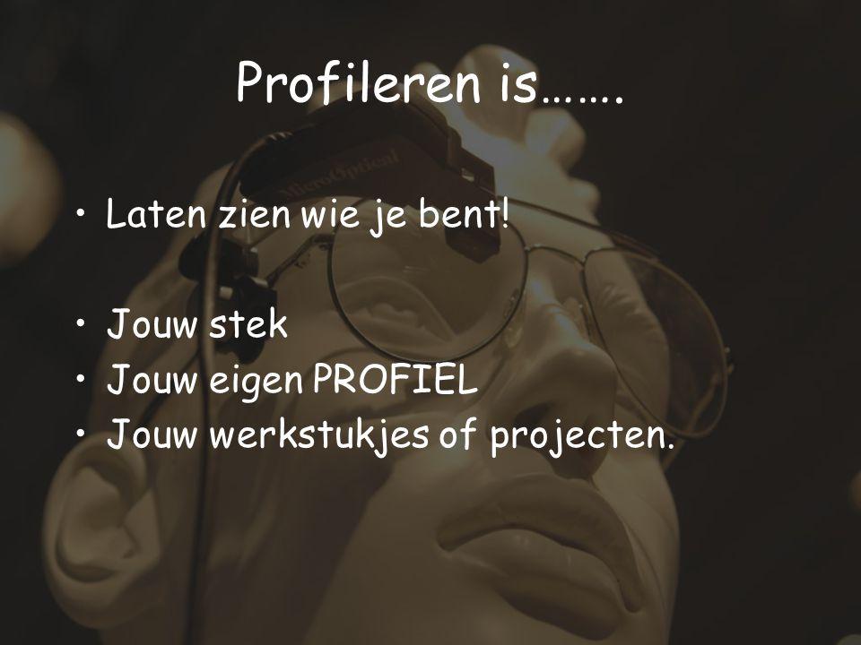 Laten zien wie je bent! Jouw stek Jouw eigen PROFIEL Jouw werkstukjes of projecten. Profileren is…….