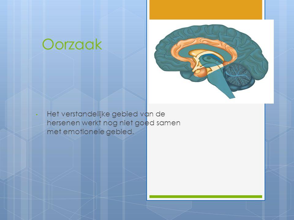 Voordelen  Creatieve opdrachten uitvoeren  Lossen snel problemen op, omdat ze geen rem hebben  Onafhankelijkheid  Flexibiliteit in hersenen