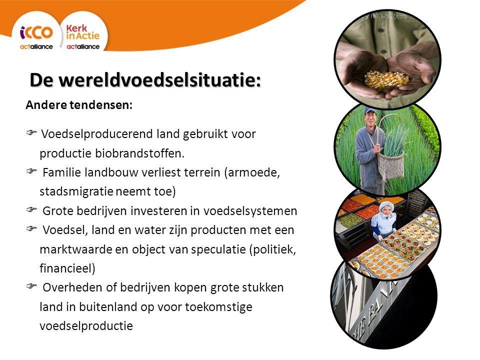 De wereldvoedselsituatie: Andere tendensen:  Voedselproducerend land gebruikt voor productie biobrandstoffen.