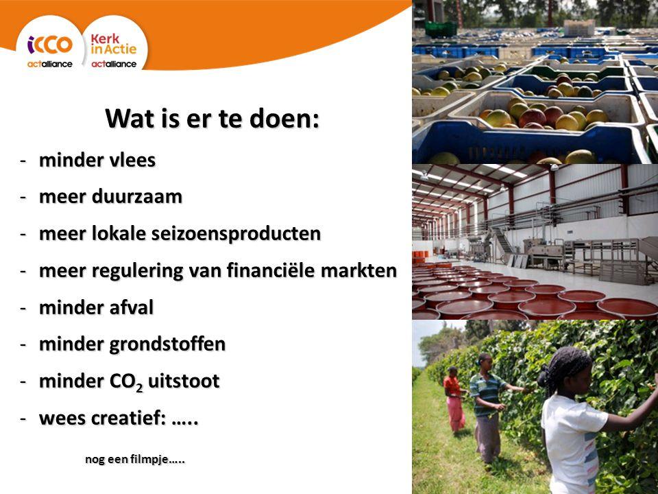 Wat is er te doen: -minder vlees -meer duurzaam -meer lokale seizoensproducten -meer regulering van financiële markten -minder afval -minder grondstoffen -minder CO 2 uitstoot -wees creatief: …..