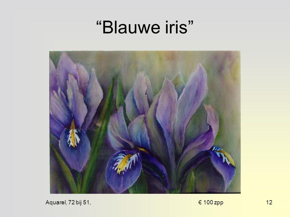 Aquarel, 66 bij 43, € 75 ingelijst11 Narcis en iris