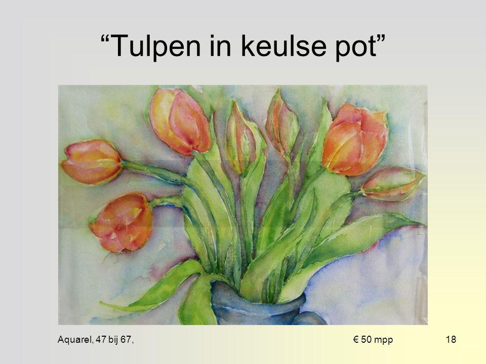 Aquarel, 46 bij 66, € 125 ingelijst17 Rode gladiolen