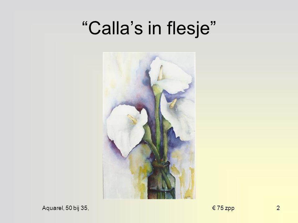 Aquarel, 50 bij 35, € 75 zpp2 Calla's in flesje
