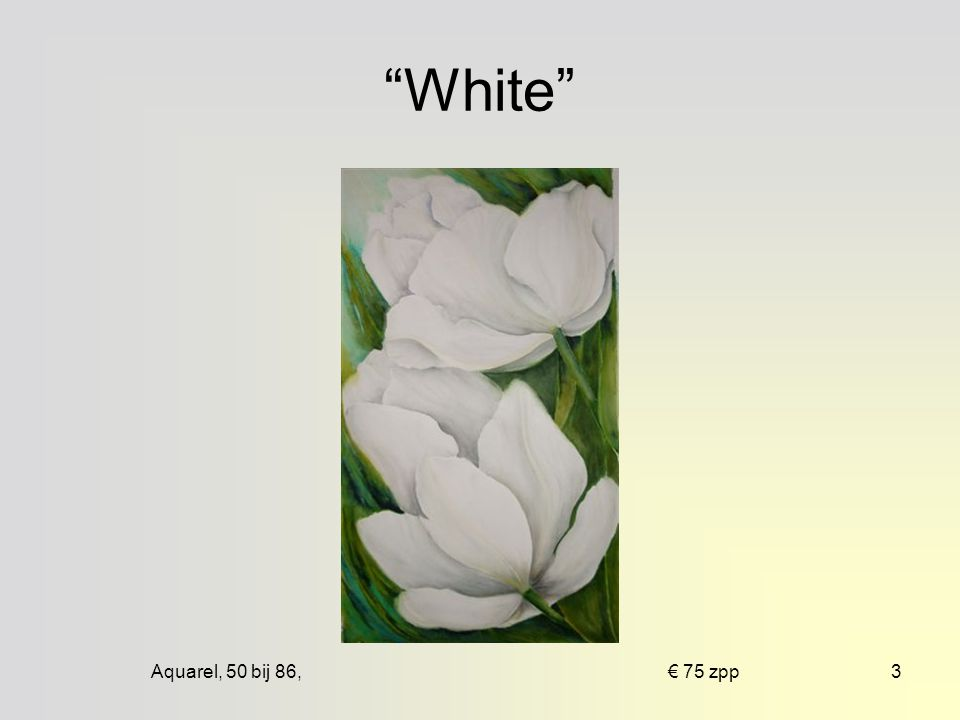 Aquarel, 60 bij 80, € 100 mpp13 Voor de wind
