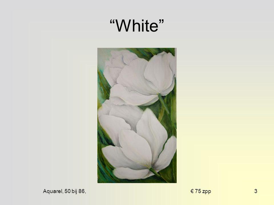 Aquarel, 50 bij 86, € 75 zpp3 White