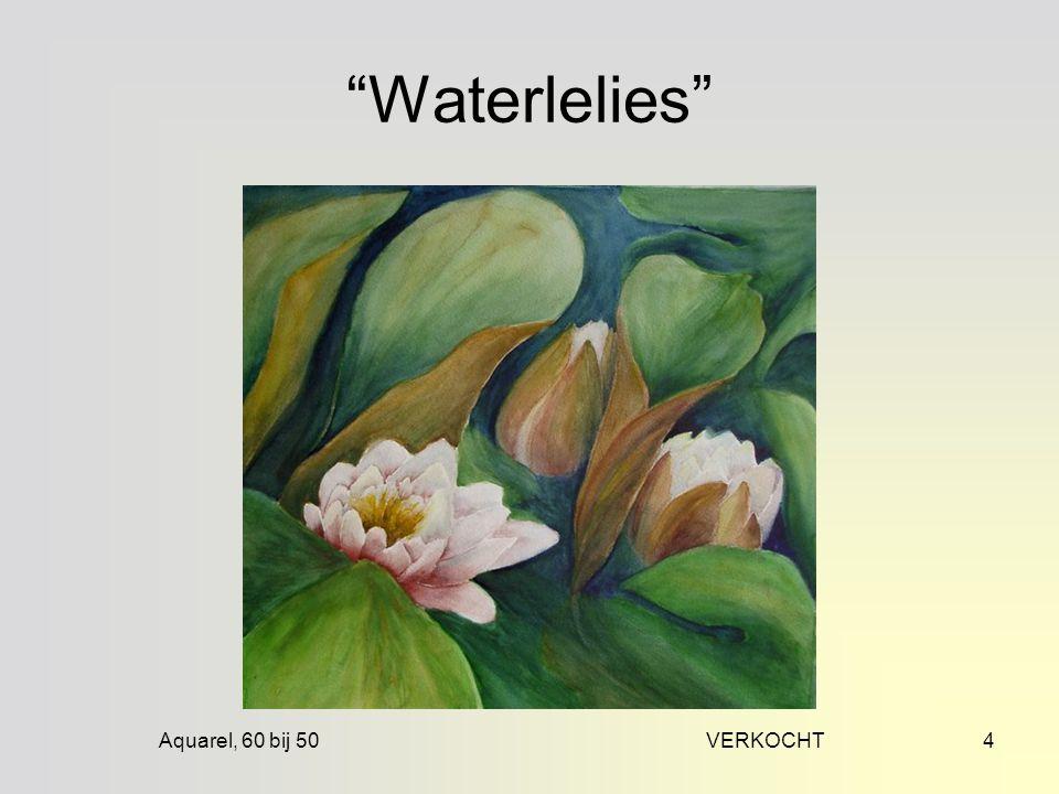 Aquarel, 60 bij 50 VERKOCHT4 Waterlelies