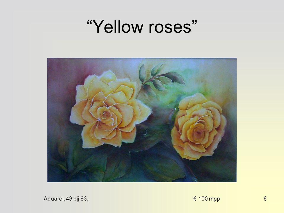 Aquarel, 43 bij 63, € 100 mpp6 Yellow roses