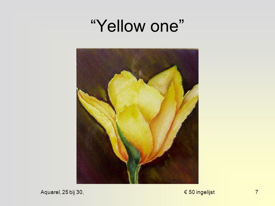 Aquarel, 43 bij 63, € 100 mpp6 Yellow roses
