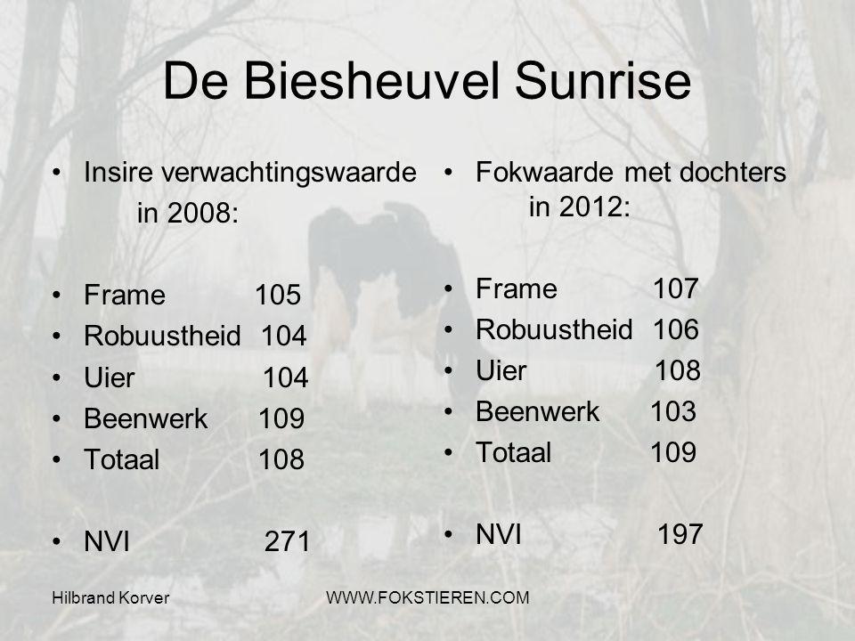 Hilbrand KorverWWW.FOKSTIEREN.COM De Biesheuvel Sunrise Insire verwachtingswaarde in 2008: Frame 105 Robuustheid 104 Uier 104 Beenwerk 109 Totaal 108