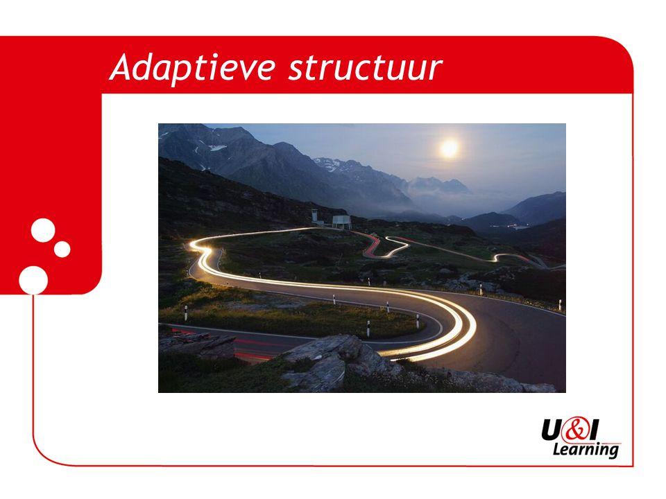 Adaptieve structuur