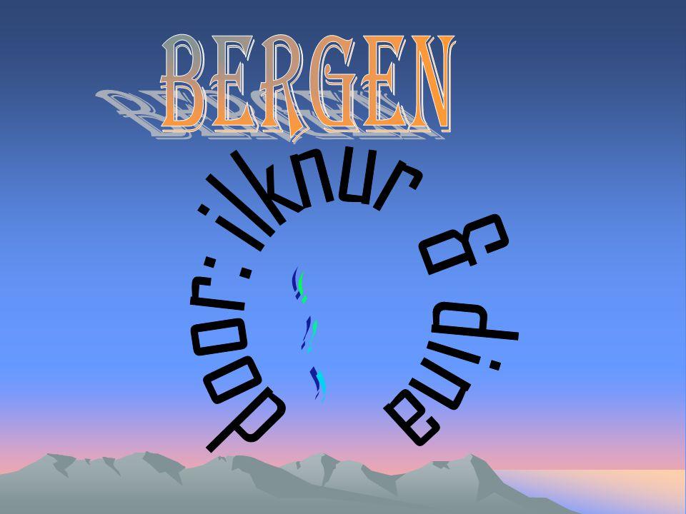 Waarom kiezen wij het onderwerp Bergen.