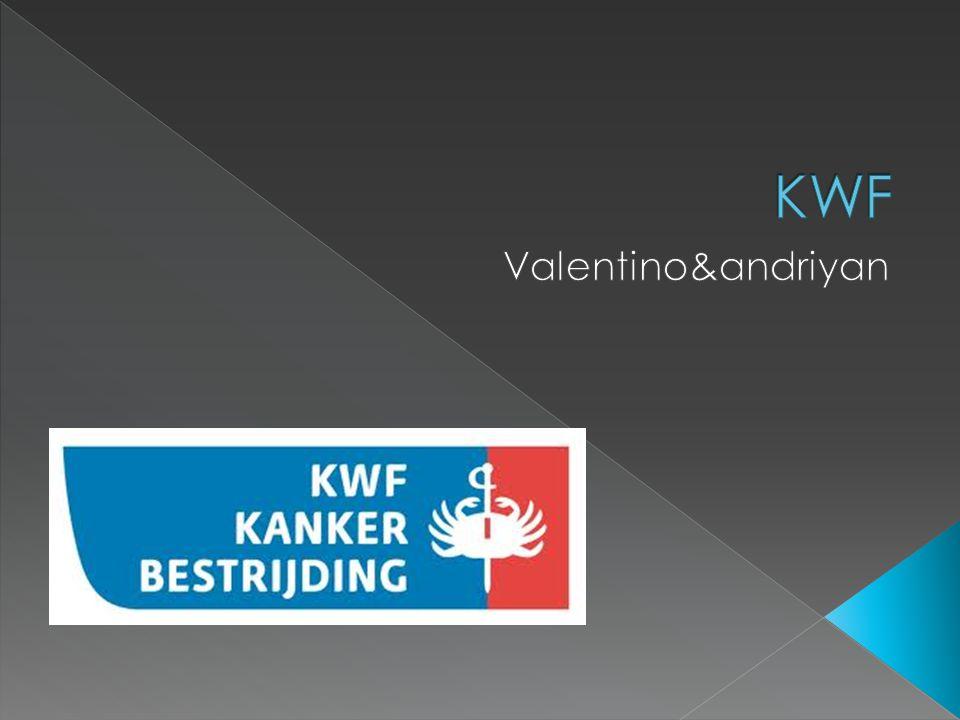  Koningin Wilhelmina Fonds / kanker bestrijding  &wat doe kankerbestrijding precies?:  Het is een Nederlandse stichting.