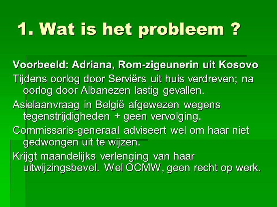1. Wat is het probleem .