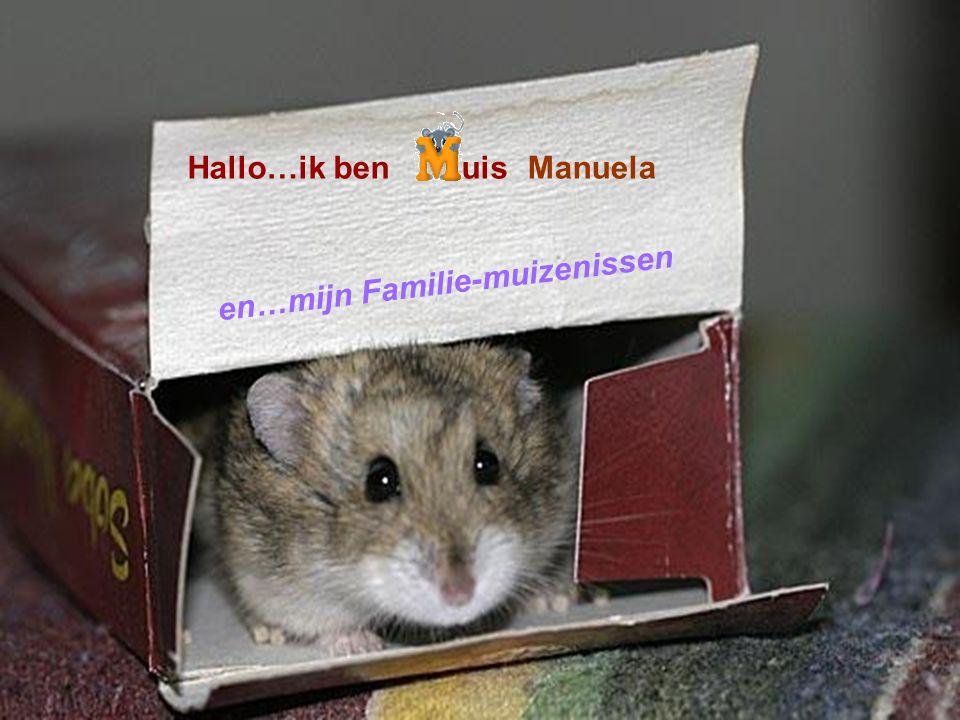 made by tillygemaakt voor: www.powerpointsite-bep.nl Hallo…ik benuis e n … m i j n F a m i l i e - m u i z e n i s s e n Manuela