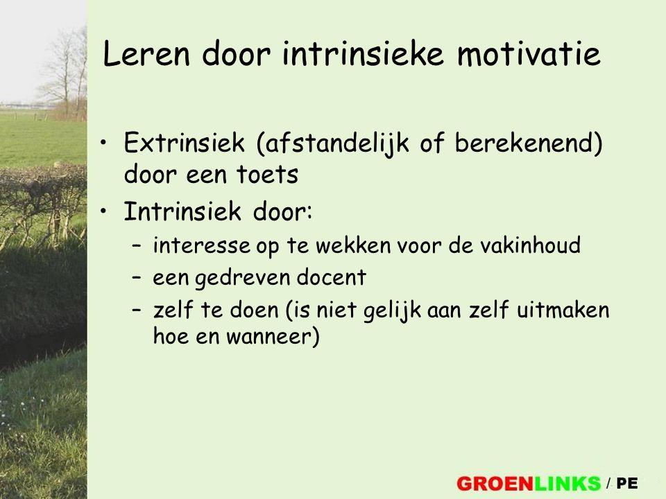 Leren door intrinsieke motivatie Extrinsiek (afstandelijk of berekenend) door een toets Intrinsiek door: –interesse op te wekken voor de vakinhoud –ee