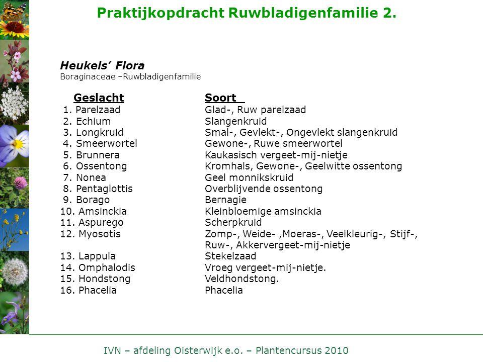 IVN – afdeling Oisterwijk e.o. – Plantencursus 2010 Praktijkopdracht Ruwbladigenfamilie 2. Heukels' Flora Boraginaceae –Ruwbladigenfamilie Geslacht So