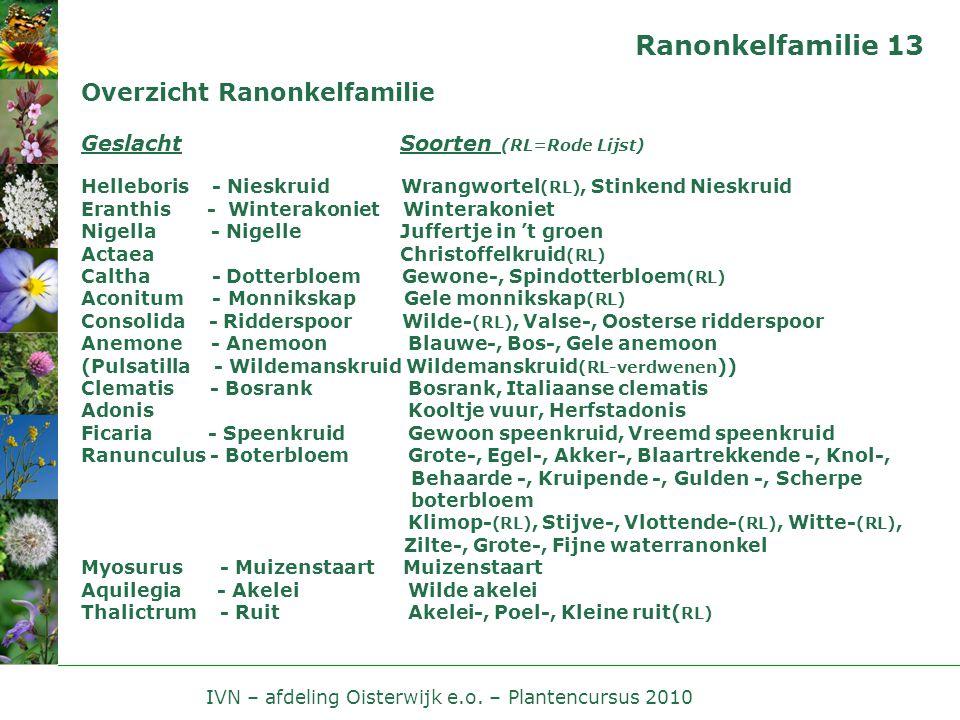 IVN – afdeling Oisterwijk e.o. – Plantencursus 2010 Ranonkelfamilie 13 Overzicht Ranonkelfamilie Geslacht Soorten (RL=Rode Lijst) Helleboris - Nieskru