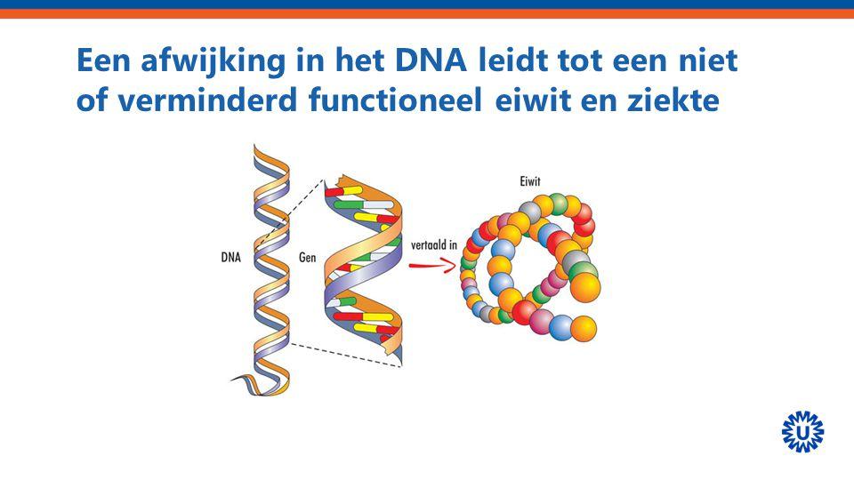 Een afwijking in het DNA leidt tot een niet of verminderd functioneel eiwit en ziekte