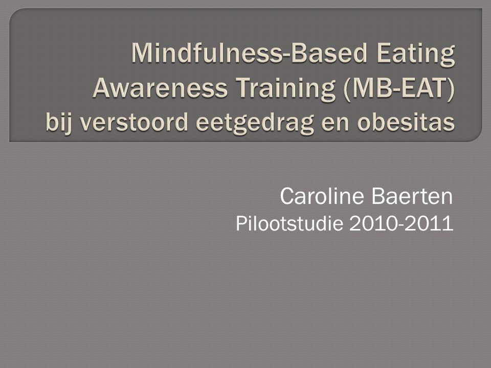 Caroline Baerten Pilootstudie 2010-2011
