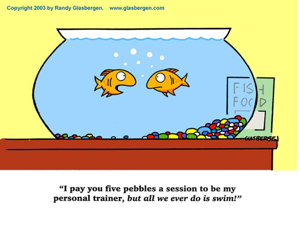 Strategie 2013-2018 goede trainingsfaciliteiten door (gediplomeerde) trainers Groei naar minimaal 85 betalende leden Ondersteuning door vrijwilligers/commissies Goede interne en externe communicatie Organiseren van nationale wedstrijden, in ieder geval 1 zwemloop en 1 RBR.