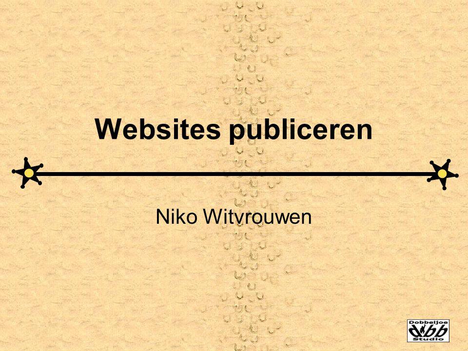 Websites publiceren Niko Witvrouwen