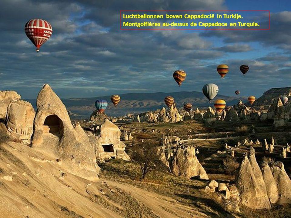 Luchtballonnen boven Cappadocië in Turkije. Montgolfières au-dessus de Cappadoce en Turquie.