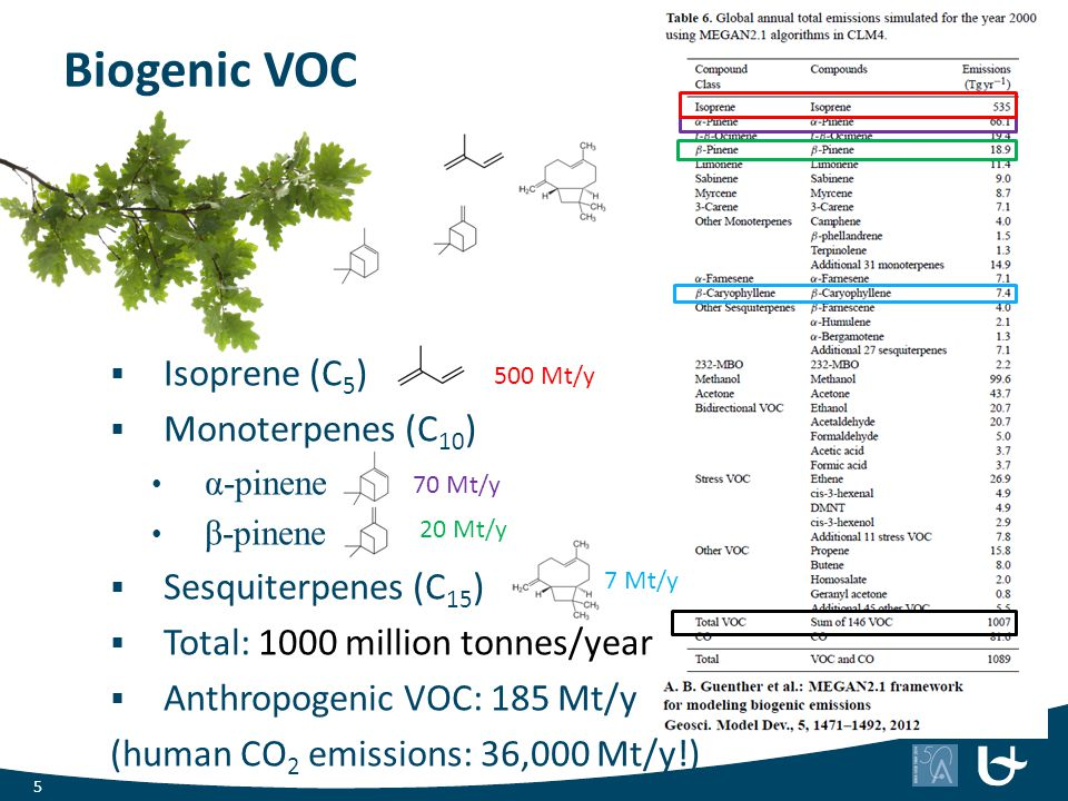 Biogenic emissions  Stimulated by light and/or temperature Why do plants emit VOCs.